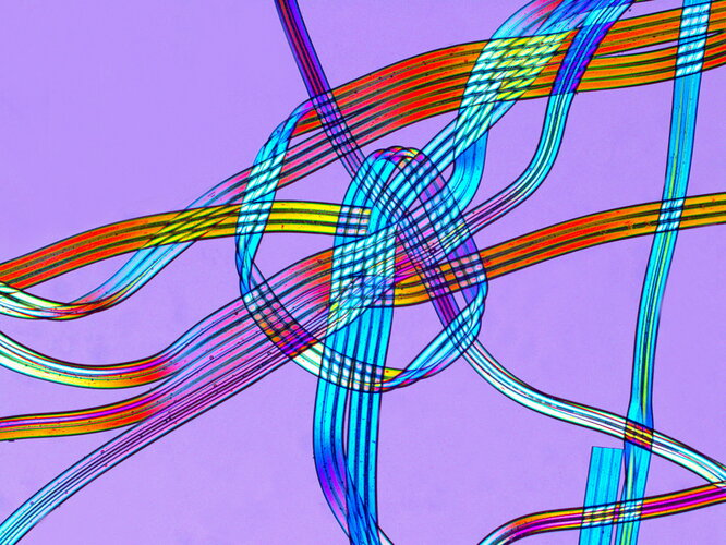 Micro-photo of polyurethane fibres